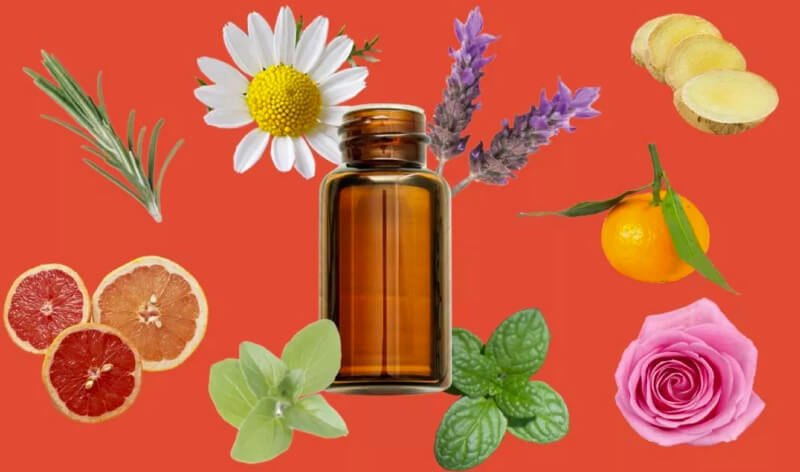 The Way to Use Essential Oils Safely and Efficiently