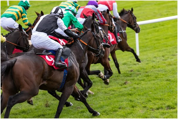 Three tips to quickly up your betting game in horse racing