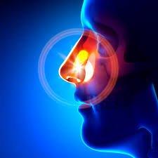 Antibiotics For Sinus Infection