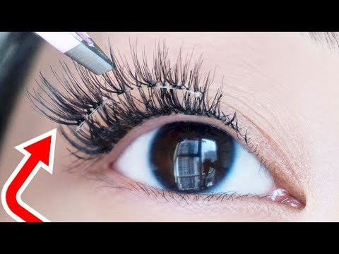 Lashes that can be Worn Everyday