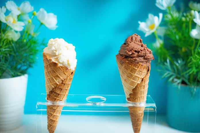 Delicious Dairy Free Ice Cream